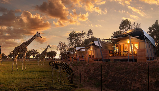 western-plains-zoo